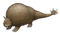 Doedicurus01.jpg