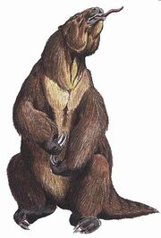 406px-Megatherum DB