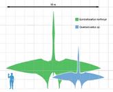 Quetzalcoatlus scale1