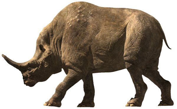 Embolotherium | Dinopedia | Fandom powered by Wikia