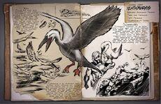 800px-Ichthyornis Dossier