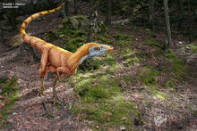 Sinosauropteryx in true colors julius t csotonyi