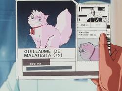 Malatesta Info