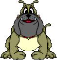 ButchtheBulldog RichB