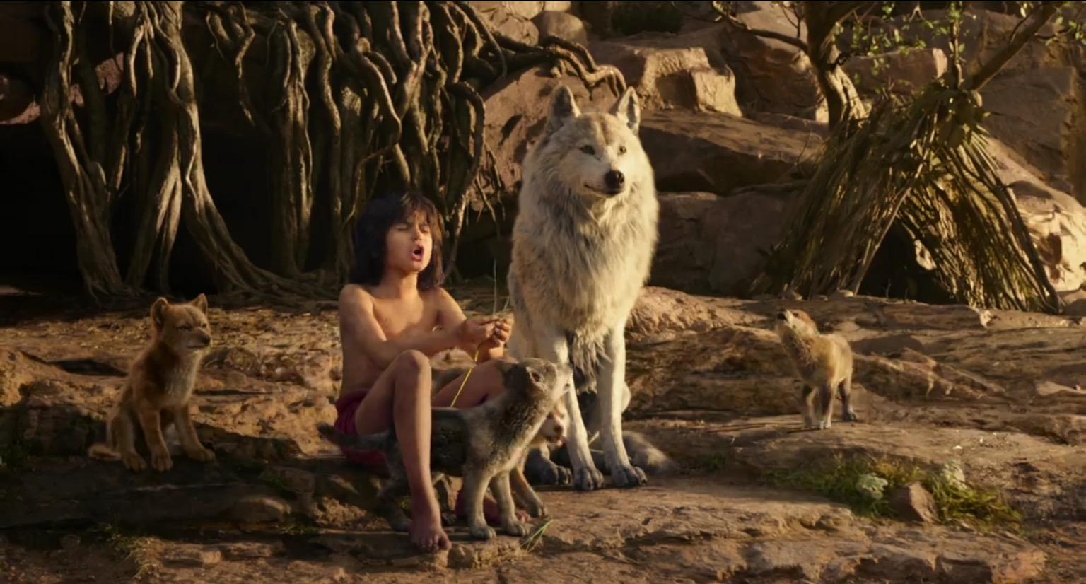 2016 Wolf Jungle Book