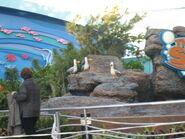 Disney 2008 0601