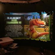 Ramsey Profile 2