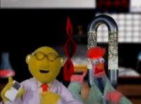 Muppet spotlight 7