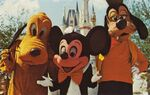 Old-Disney-post-cards-Mickey-Mouse