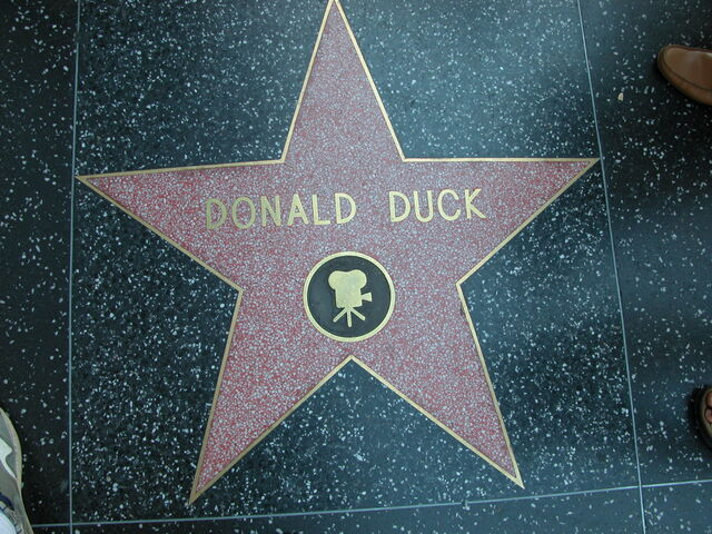 File:Donald Duck HWOF.jpg