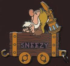File:Sneezy Pin.jpg