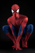 Spider-Man DP Costume