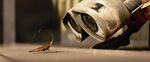 Wall-e and Cockroach