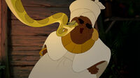 Princess-and-the-frog-disneyscreencaps com-7182