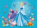 Cinderella Redesign 8