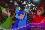 Sleeping Beauty Diamond Edition Own It Now Promotion