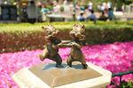 Disneyland-chi-n-dale