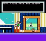 Chip 'n Dale Rescue Rangers 2 Screenshot 17