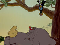 Dumbo-disneyscreencaps.com-6014