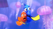 Dory-marlin-jellyfish