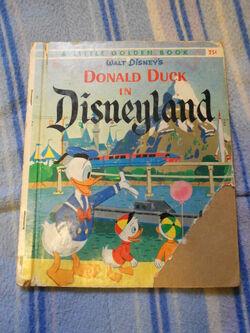 Donald duck in disneyland 2