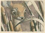 Bambi MelShaw