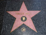 Tinker Bell's star on the Hollywood Walk of Fame