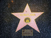 Disneyland hollywood walk of fame star