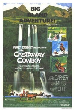The Castaway Cowboy FilmPoster