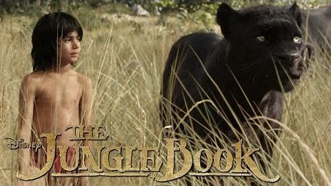The Jungle Book Kino