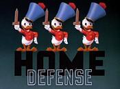 Home defense