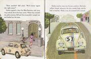 Herbie's special friend 6