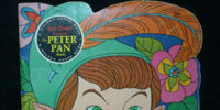The Peter Pan Book