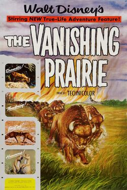 Vanishing Prairie
