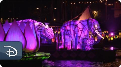 What Guests Are Loving About 'Rivers of Light' Disney's Animal Kingdom