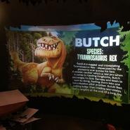 Butch profile 2