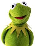 KermitTheFrog-CutePhoto