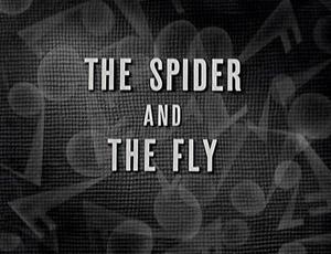 File:Ss-spiderfly-redux.jpg
