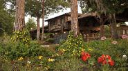 Campsites-at-fort-wilderness-resort-gallery06