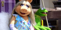 Miss Piggy/Gallery
