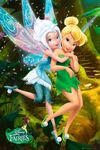 Disney-fairies-periwinkle-and-tinkerbell