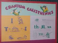 CC CraniumCalisthenics