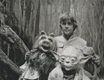 MarkHamill-Muppets-Yoda2