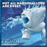 Marshmalloe