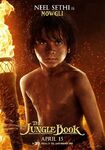 The Jungle Book 2016 Character Poster 06