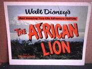 The african lion milotte original title lobby card