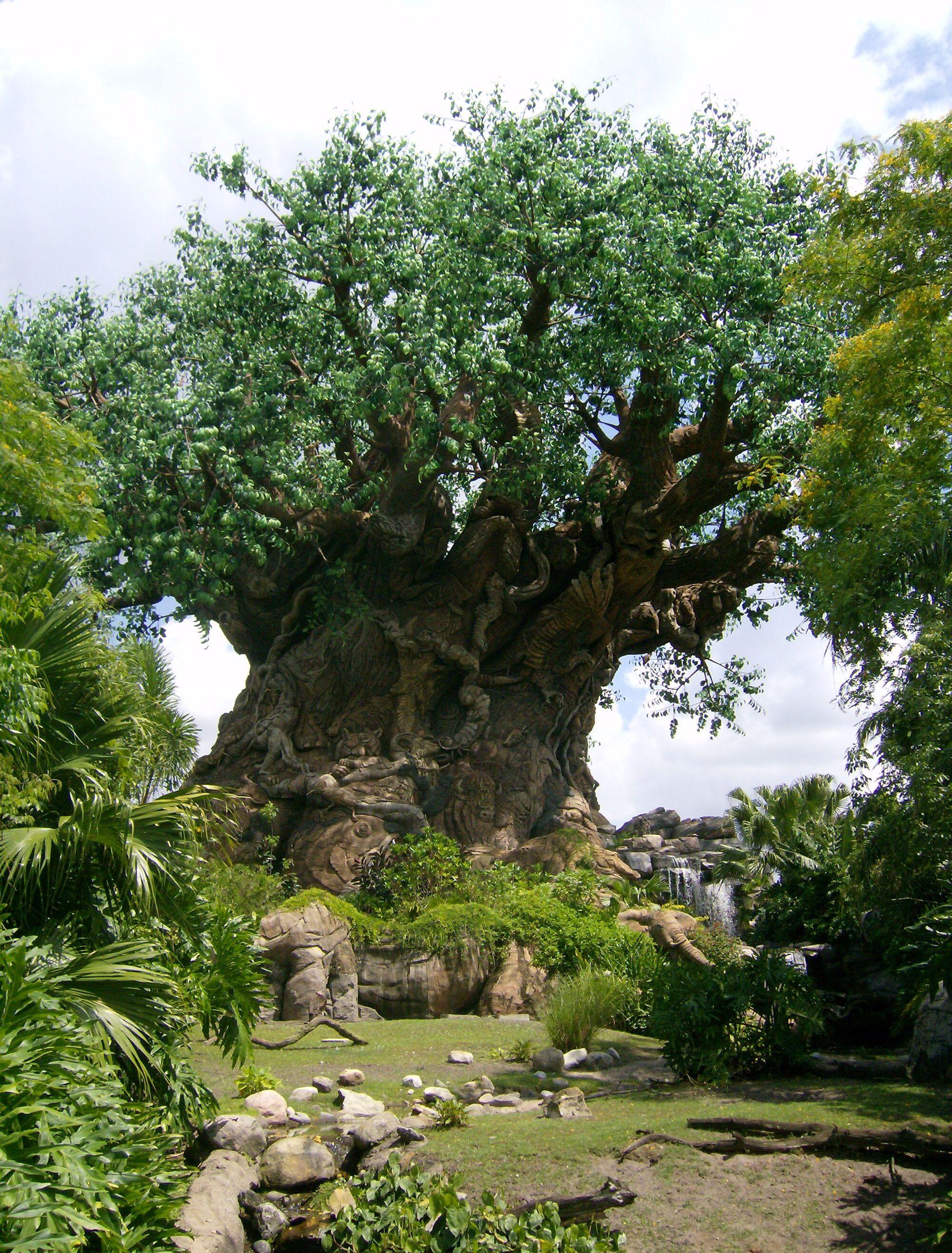 tree of life disney wiki fandom powered by wikia