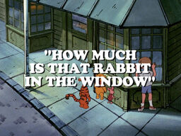 How Much is that Rabbit in the Window