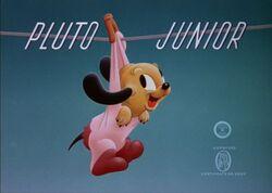 Pluto-Junior
