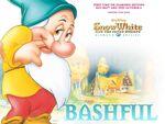 Sw bashfulwllpr